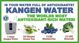 Proprietati apa kangen antioxidanta terapeut brinzoi silviu